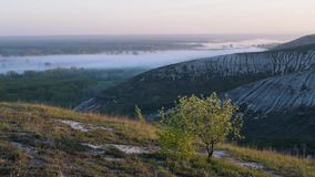 Blooming tree on hills. Spring landscape with morning fog. Accelerated video stock video footage