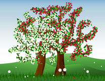 Blooming trees. Vector illustration for spring Stock Photo