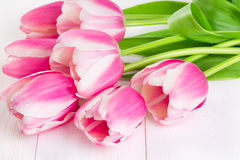 Blooming  tulips on white wooden Royalty Free Stock Photos