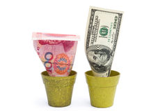 Blooming USD and fade RMB Stock Photography