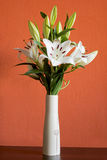 Blooming white lilies in a slim vase Stock Images