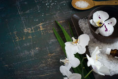 Blooming white orchid  in bowl of water and SPA setting. Space f Stock Image