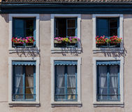Blooming Windows Lyon France Stock Photography