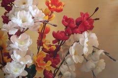 bloosm einer Blume stockbild