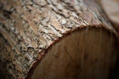Bloque de madera Fotografía de archivo