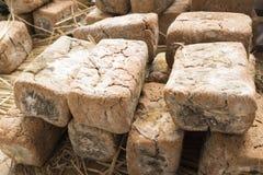 Bloque de soybeansMeju fermentado imagen de archivo libre de regalías