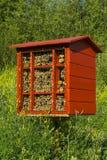 Bloque hecho en casa de la jerarquía para las abejas de albañil para la polinización de plantas Fotografía de archivo libre de regalías