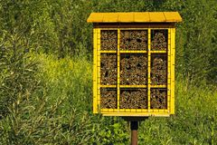 Bloque hecho en casa de la jerarquía para las abejas de albañil para la polinización de plantas Imágenes de archivo libres de regalías