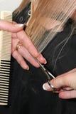 Bloqueos de Goldie Foto de archivo libre de regalías