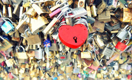 Bloqueos del amor en París Rose roja Fotos de archivo libres de regalías