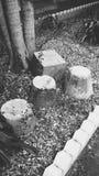 Bloques de cemento Imagen de archivo libre de regalías