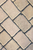 Bloques de cemento, bloques de camino, planta Foto de archivo