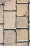 Bloques de cemento, bloques de camino, planta Fotografía de archivo