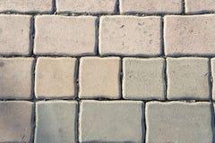 Bloques de cemento, bloques de camino, planta Fotos de archivo libres de regalías