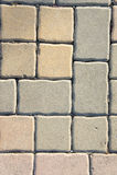 Bloques de cemento, bloques de camino, planta Imagen de archivo libre de regalías