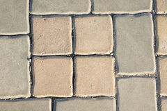 Bloques de cemento, bloques de camino, planta Imágenes de archivo libres de regalías