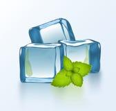 Bloques de hielo del vector con la menta Foto de archivo libre de regalías