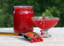 Bloquez des baies de groseille rouge dans un pot en verre Photographie stock libre de droits