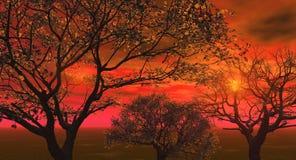 Bloss_Tree_Red Royalty Free Stock Photo