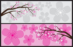 Blossom Banners Royalty Free Stock Photography