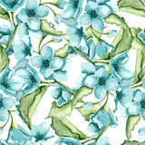 Blossom blue flowers Royalty Free Stock Images