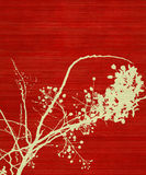 Blossom Branch Print on Red Background Stock Photography
