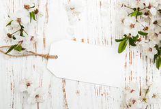 Blossom with card Royalty Free Stock Photos