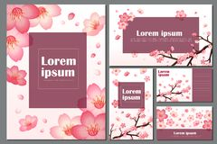 Blossom cherry greeting cards. Sakura vector blossom cherry greeting cards with spring pink blooming flowers royalty free illustration