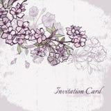 Blossom cherry or sakura wedding invitation card Stock Image