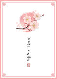 Blossom Cherry Template Background Stock Photography