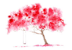 Blossom cherry tree and swing. royalty free stock photo
