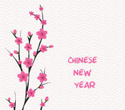 Blossom chinese new year and background Stock Photography