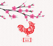 Blossom chinese new year rooster and background.  Stock Photos