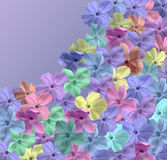 Blossom Field. Blossoms of many colors on a blue backround with room for copy in the upper riaght Royalty Free Stock Images