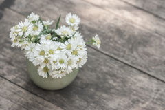 Blossom flower in vase on table. Stock Photography