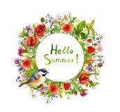 Blossom flowers, garden grass, summer herbs, bird. Floral wreath. Watercolor card royalty free stock photography
