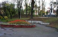 Blossom for flowers Ivano-Frankivsk Stock Images