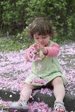 Blossom Girl 2. Cute little girl, playing with the spring blossom royalty free stock photos