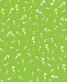 Blossom Green Royalty Free Stock Images