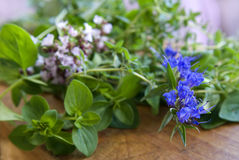 Blossom herbs Royalty Free Stock Photo