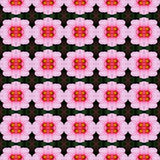 Blossom of hibiscus flower in full bloom seamless. Pink hibiscus flower in full bloom seamless use as pattern and wallpaper stock illustration