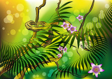 Blossom liana. The tropical liana blossoming in the morning jungle stock illustration