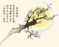 Blossom Pattern. Vector of Chinese Traditional Artistic Plum Blossom Pattern Stock Images