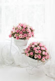 Blossom - pink flower, floral background Stock Photos