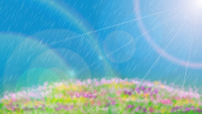 Blossom Rain Daylight and Blue sky background Stock Photography