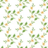 Blossom. Seamless background. Watercolor floral pattern. Hand drawn seamless floral pattern Stock Photo