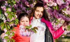 Blossom smell, allergy. Sisterhood. small girl children in spring flower bloom. Natural cosmetics for skin. happy stock images