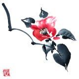 Blossom tree. Flowers illustration.. Royalty Free Stock Photography
