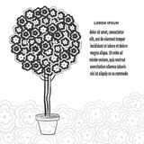 Blossom tree in pot, stylized bonsai in black and white Stock Images