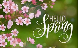 Blossom tree and spring Lettering vector illustration